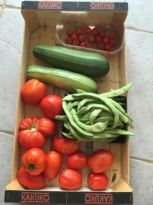 Vegetable, Harvest, Raspberry, Tomatoes, Garden, Bio