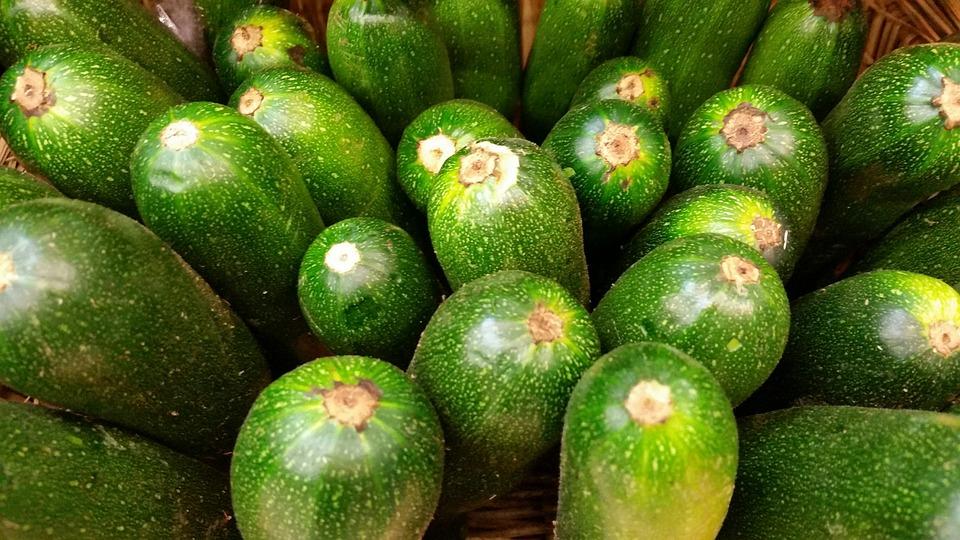 Zucchini, Bio, Vegetable