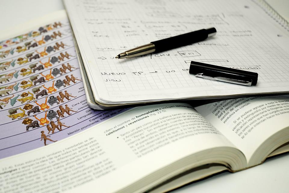 Student, Biology, Notes, Think, Study, Faculty