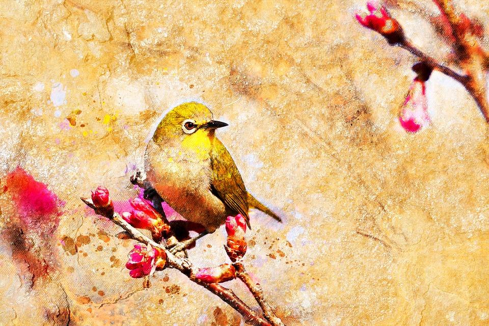 Bird, Pattern, Floral, Vintage, Background, Leaf