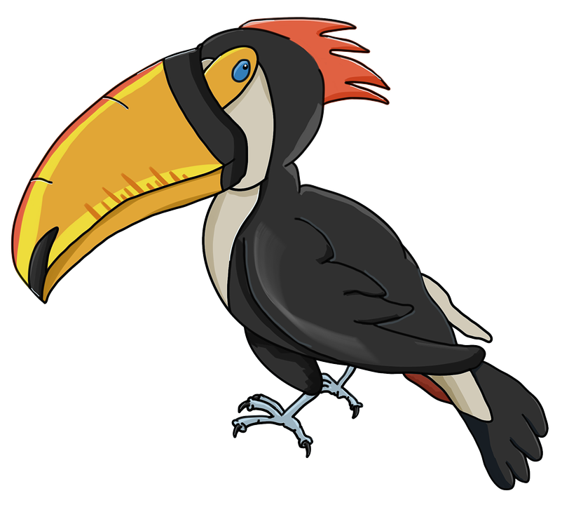 Toucan, Perseid, Bird, Beak, Cartoon, Character