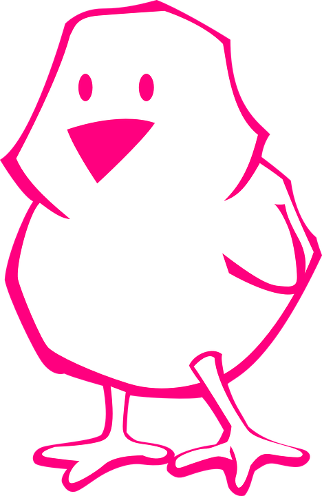 Chick, Pink, Outline, Easter, Bird, Baby, Cute, Cartoon