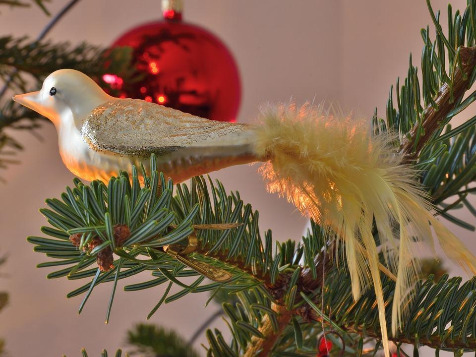 christmas ornaments bird christmas tree christmas - Bird Christmas Ornaments