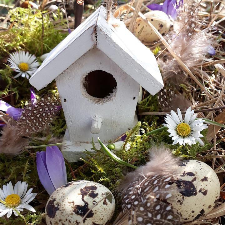 Aviary, Easter Nest, Egg, Decoration, Bird Feeder