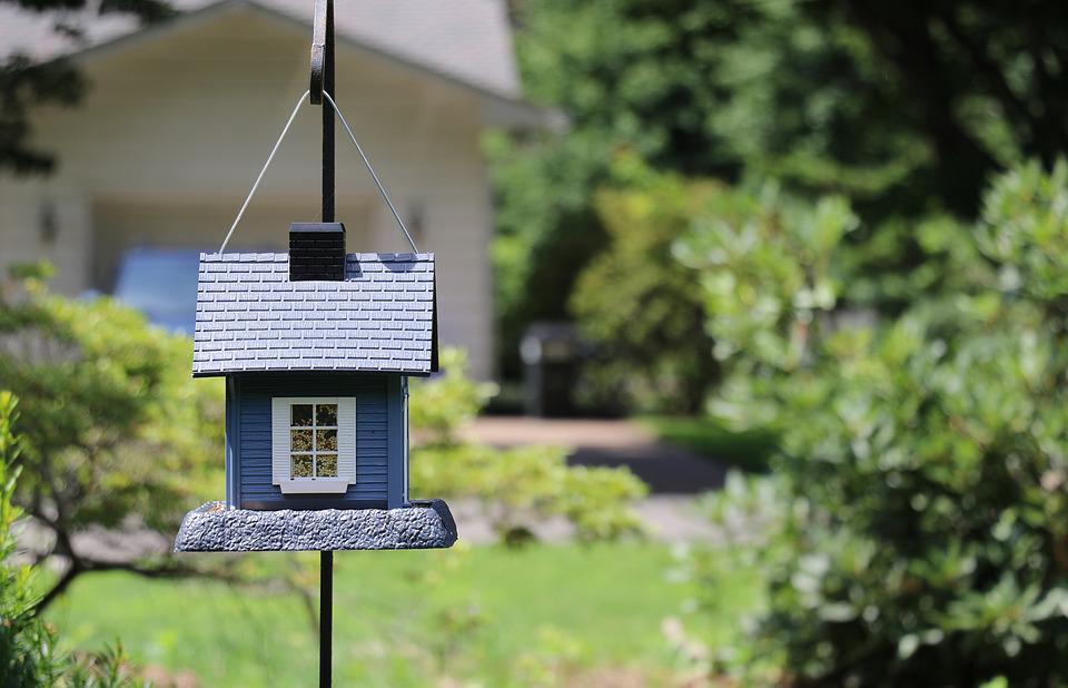 Birdhouse, Bird House, Small, Yard