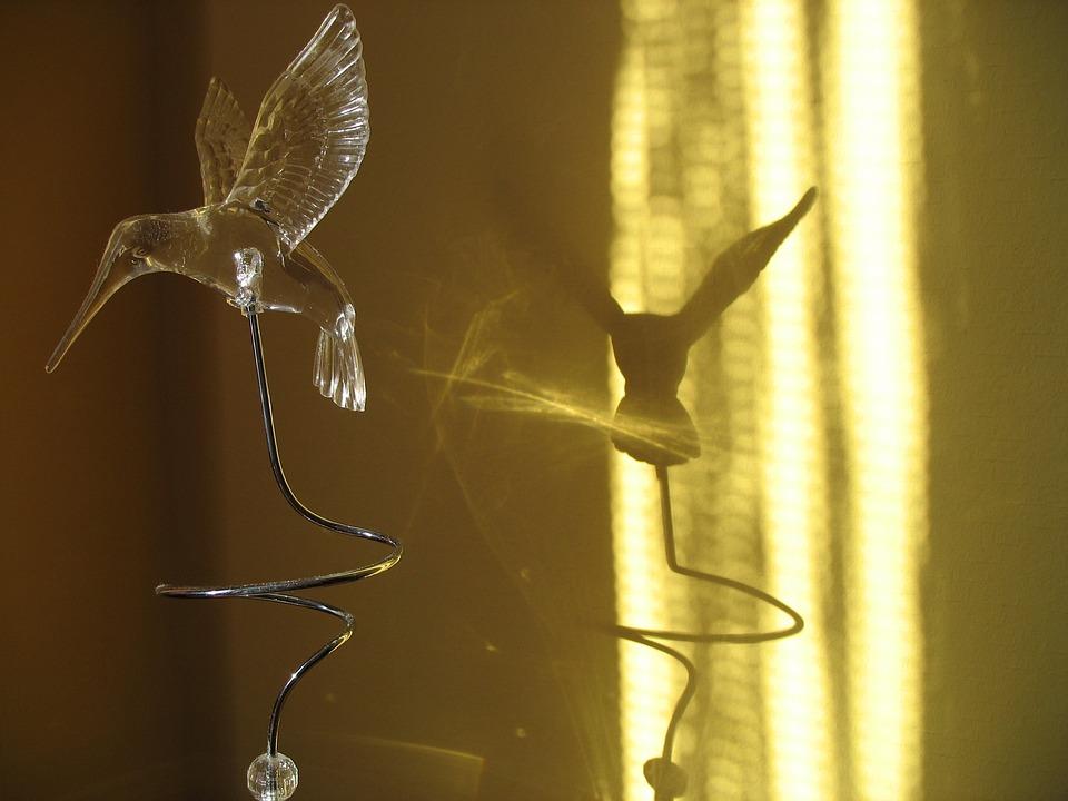 Hummingbird, Artificial, Bird, Shadow
