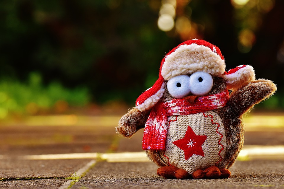 Owl, Plush, Winter, Funny, Cap, Scarf, Bird, Cute