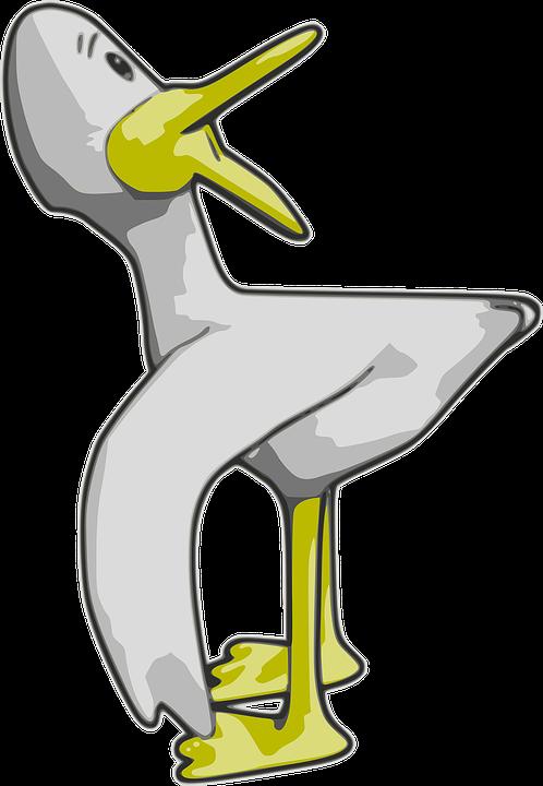 Duck, Bird, Cartoon, Poultry