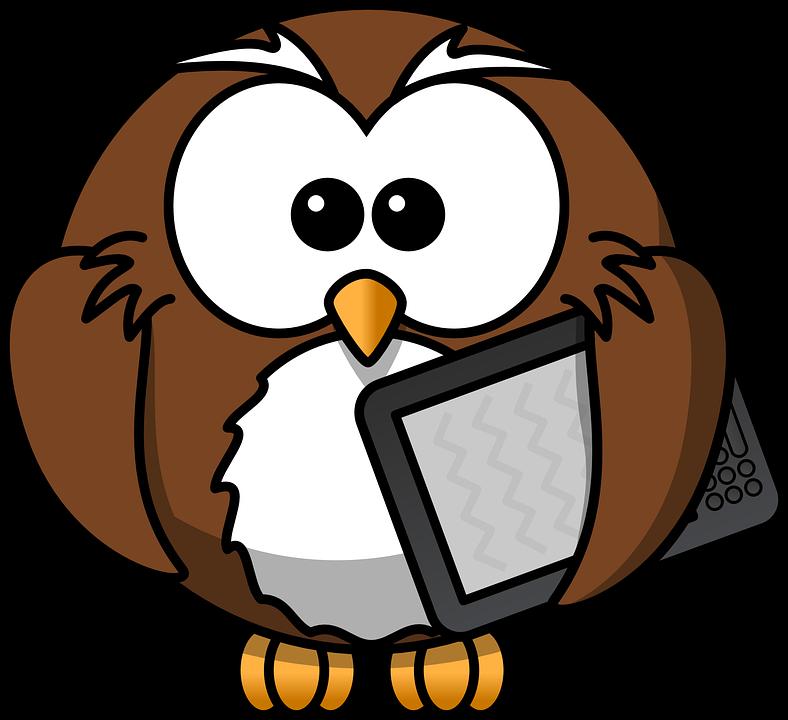 Owl, Animal, Bird, Book, E-book, Funny, Kindle, Reader