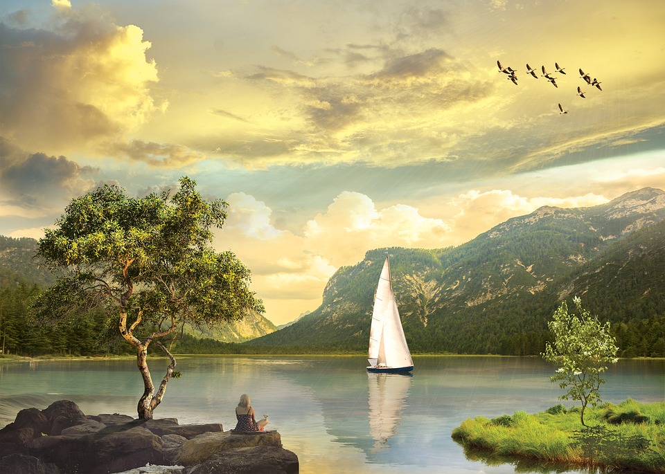 Water, Nature, Tree, Sky, Landscape, Birds, Sail, Boat