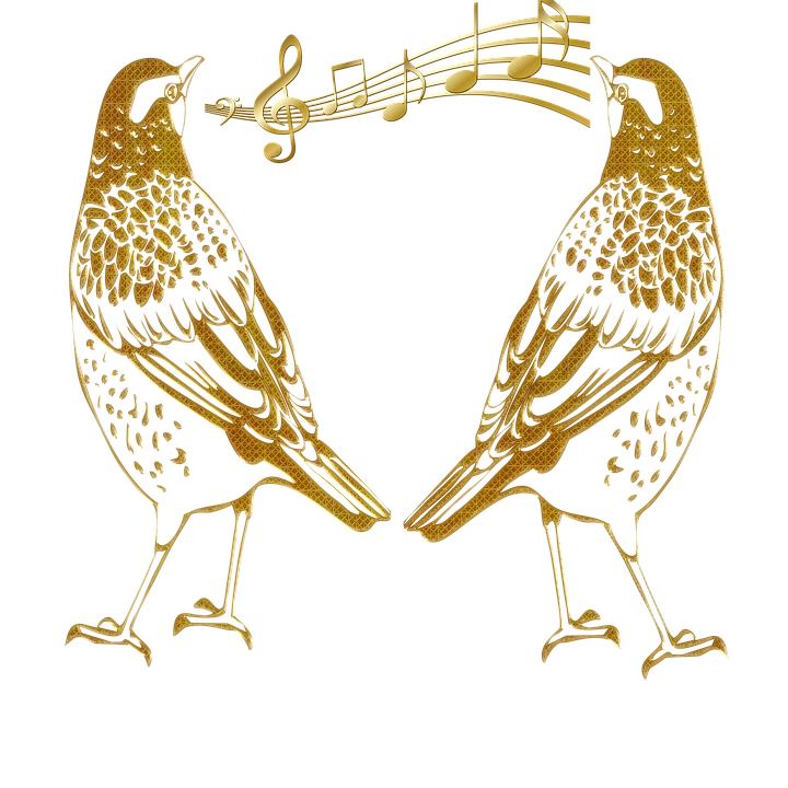 Birds Outline, Birds, Abstract Gold Embossed, Singing