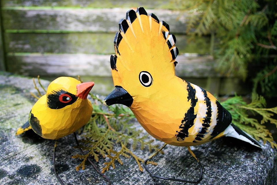 Birds, Para, Wooden, Total, Dudek, Nature
