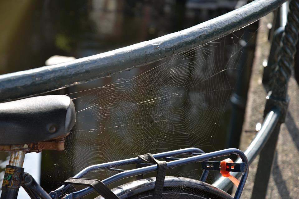 Web, Light, Bicycle, Black, Amsterdam, Holland, Classic