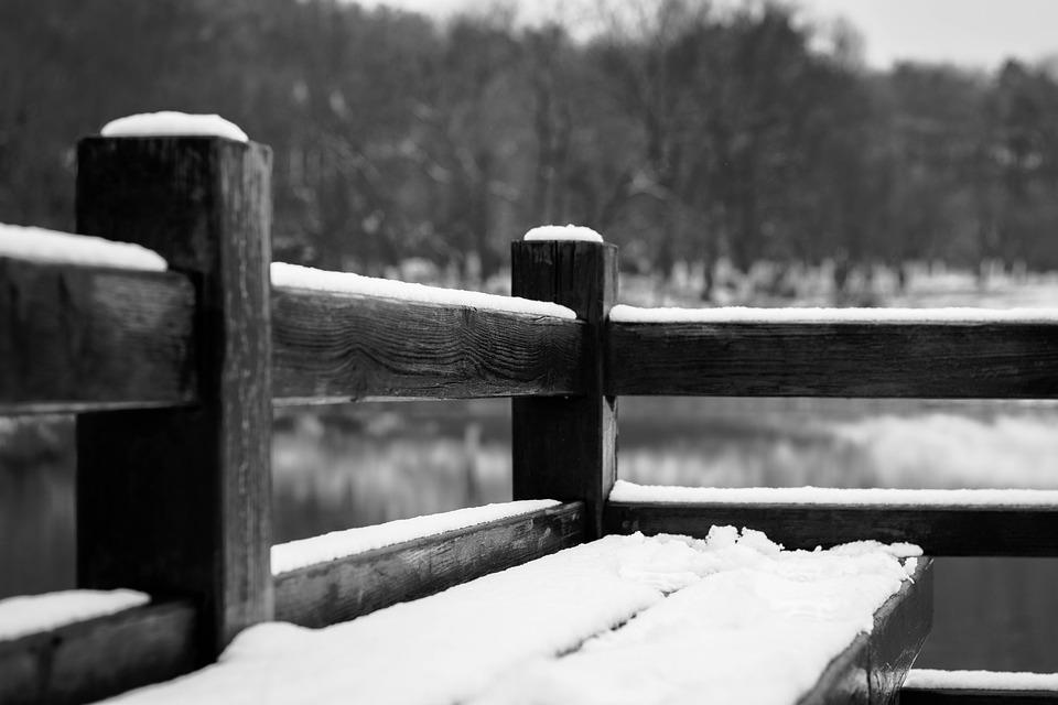 Snow, Black And White, Bench, Park, Lakefront