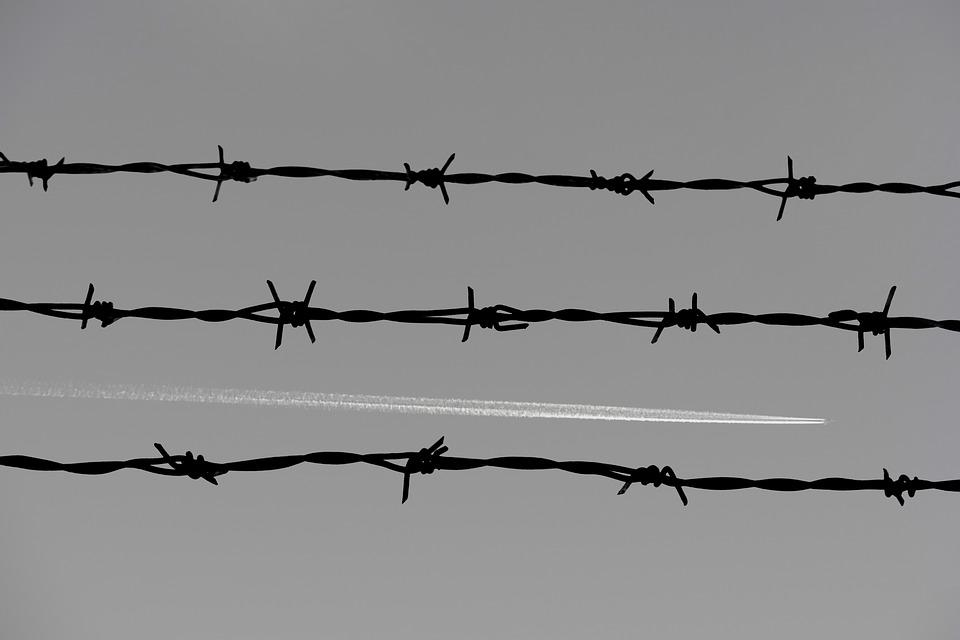 Barbed Wire, Fence, Prison, Aircraft, Black And White