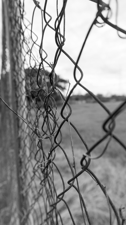 Black And White, Fence, Field, Metal