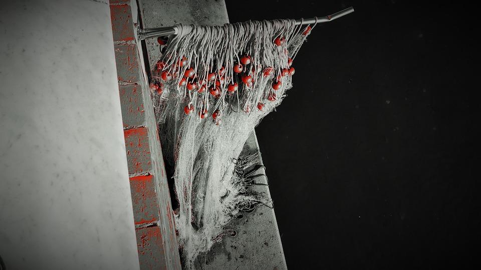 Network, Hanging, Black And White, Marina Di Massa