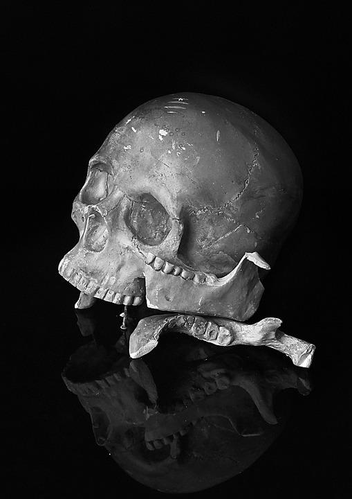 Skull, Horror Movie, Broken, Human, Black And White
