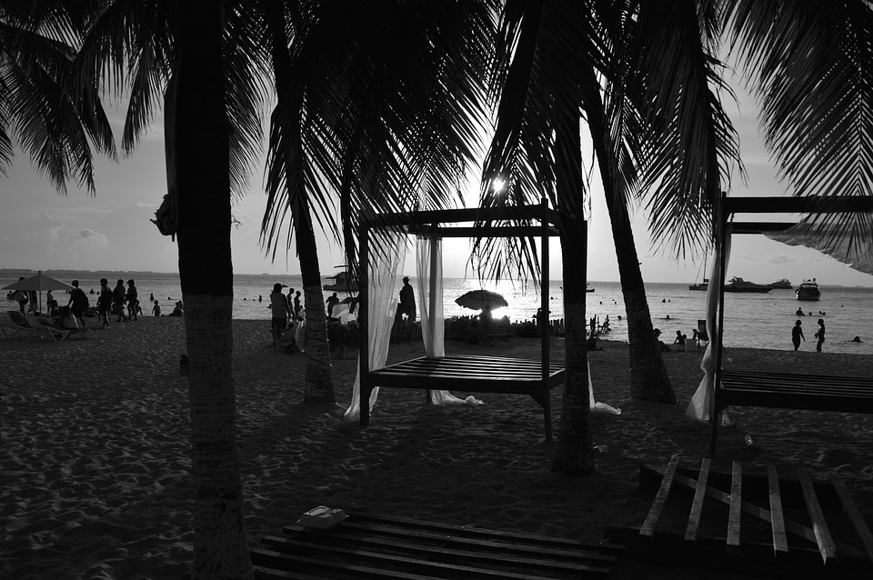 Beach, Sunset, Black And White, Palms, Mexico
