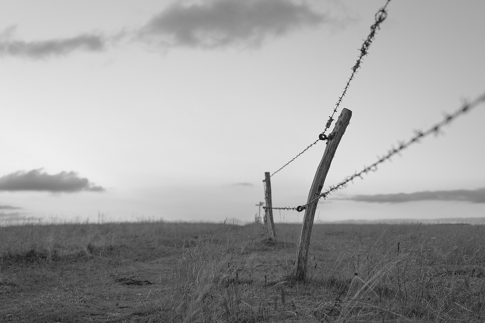 Fence, Away, Wide, Rest, Horizon, Black And White