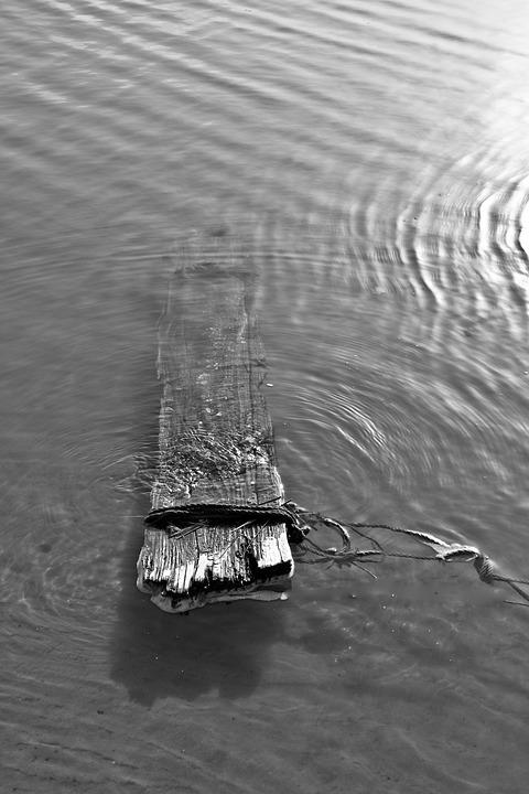 Board, Water, Black And White, Sea