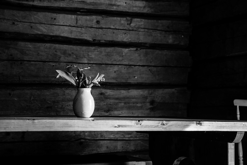 Lily Of The Valley, Black And White, Old House, White