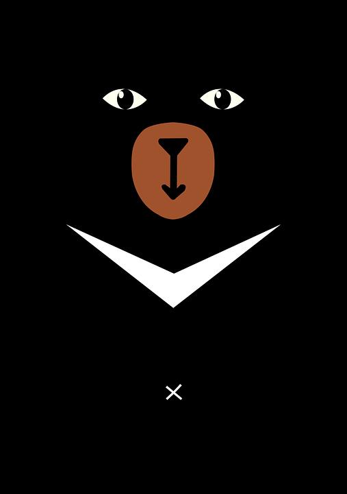 Animal, Bear, Black, Black Animals