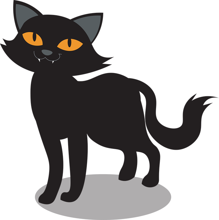Halloween, Cat, Pet, Black Cat, Kitten, Animal, Feline