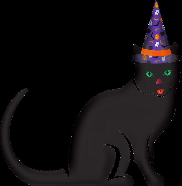 Halloween Decorations, Black Cat, Feline, Cat