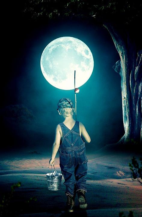 Full Moon, Moon, Dark, Moonlight, Nature, Black, Bright