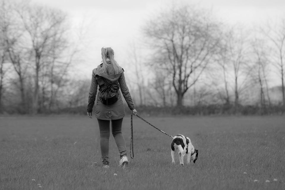 Black, White, Black And White, Animal, Dogs, Girl