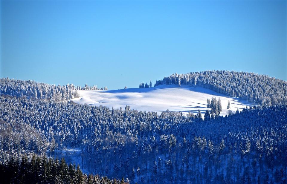 Black Forest, Ski Run, Winter Forest, Eiswald, Hill