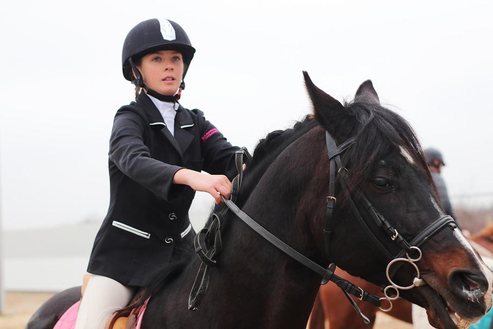 Free photo Black Race Horse Brown Costume Girl Hippodrome - Max Pixel