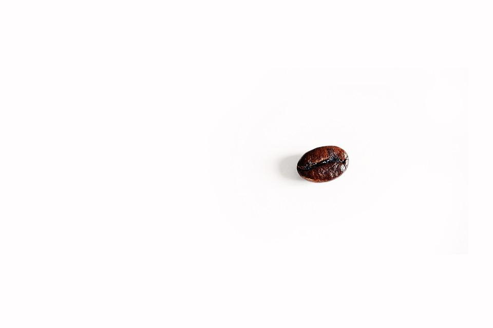 Coffee Bean, Coffee, Alone, Blank, Caffeine, Aroma