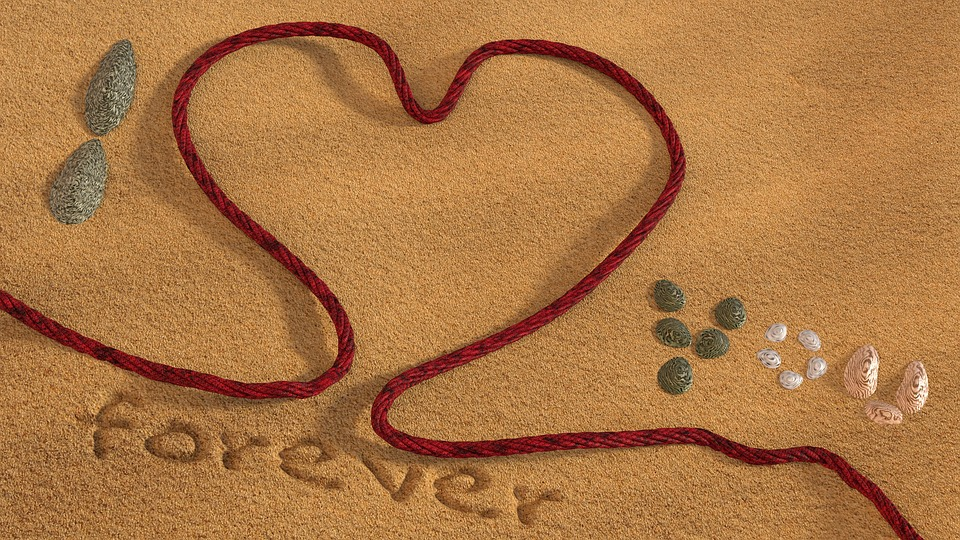 Love, Beach, Sand, Rope, Shell, 3d, Blender