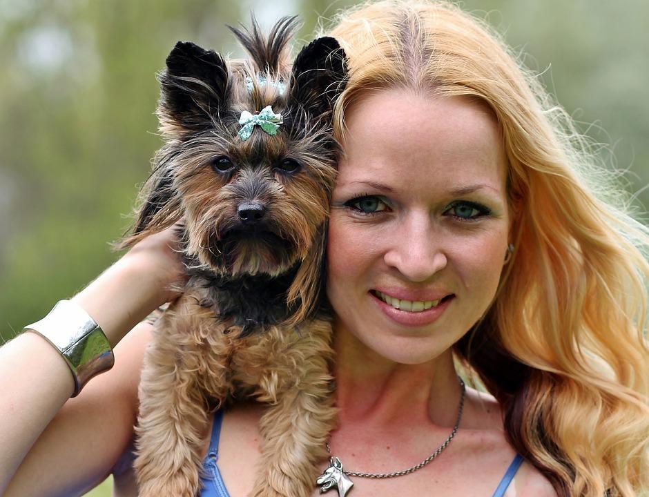 Yorkie, Blonde Woman, Facial, Love, Dog