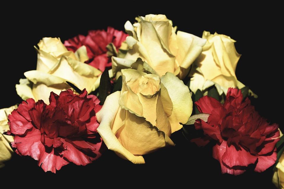 Rose, Carnation, Bouquet, Blossom, Bloom, Flowers