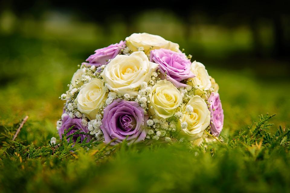Bloom, Blossom, Bouquet, Flora, Flowers, Grass, Petals