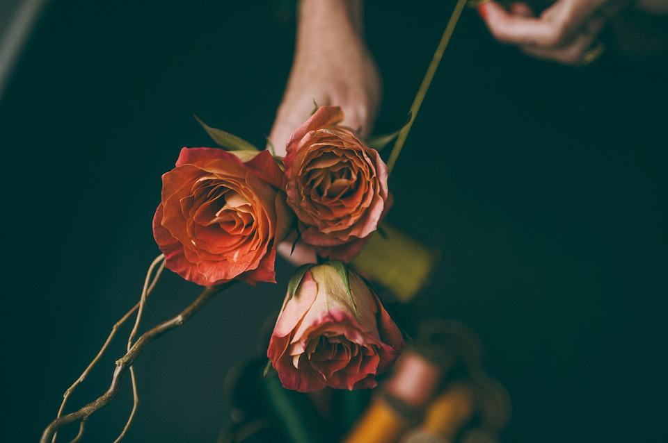 Roses, Flowers, Bloom, Blossom, Flora, Bunch