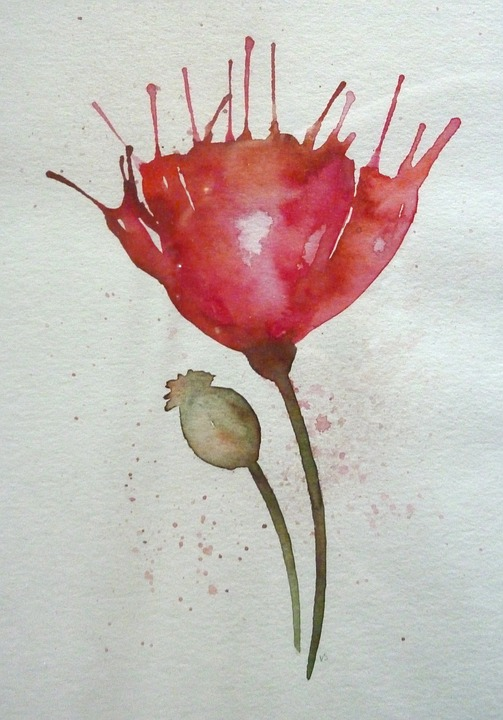 Poppy, Flower, Watercolour, Blossom, Bloom, Nature, Red