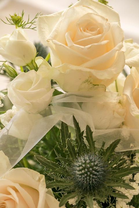 Rose, Bouquet, Flowers, Blossom, Bloom, Nature, Petals