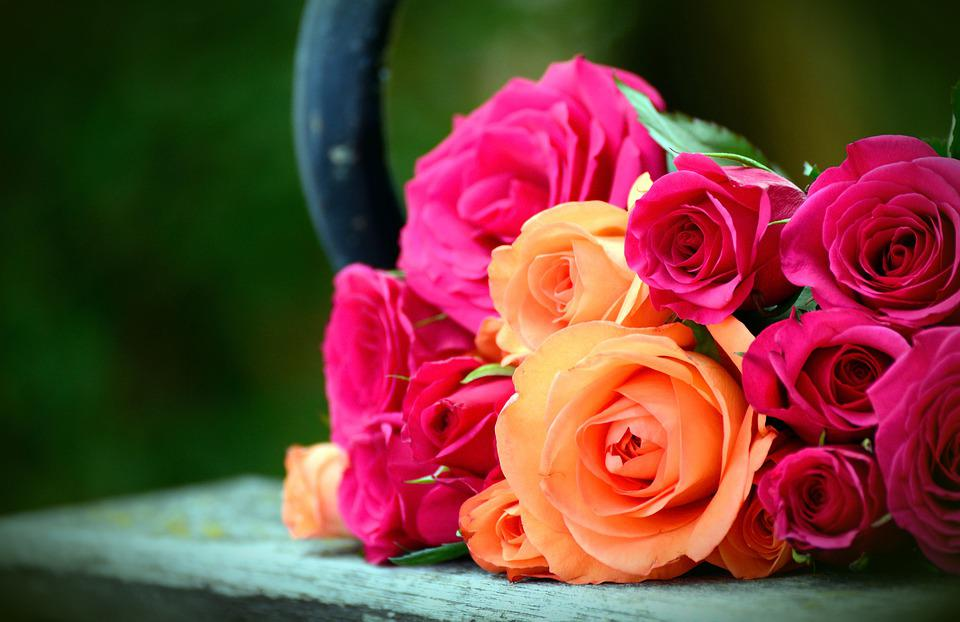 Roses, Bouquet Of Roses, Flowers, Blossom, Bloom