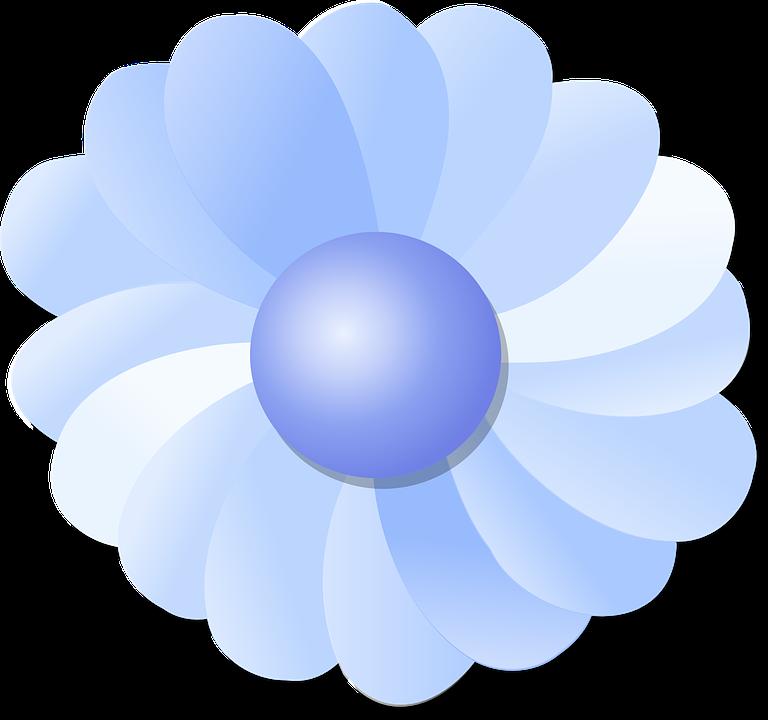 Flower, Blue, Petals, Blossom, Flora, Bloom