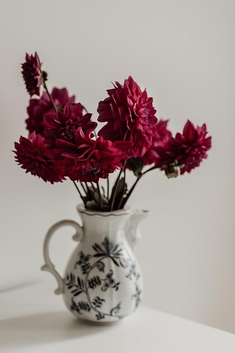 Still Life, Dahlia, Romantic, Blossom, Vase