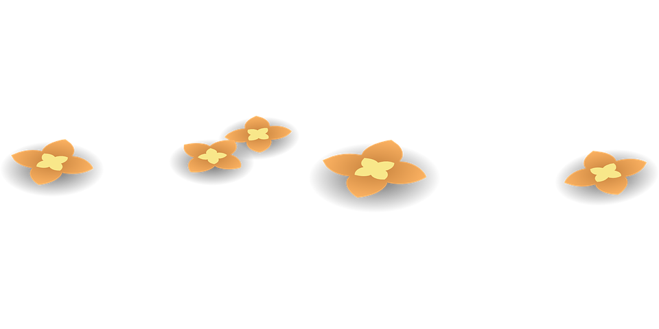 Flowers, Orange, Yellow, Blossoms, Blooming, Floral
