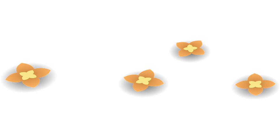 Flowers, Orange, Blossoms, Blooming, Floral, Plant
