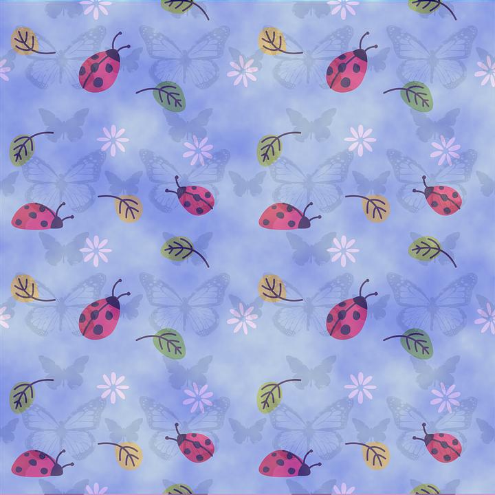 Background, Ladybug, Blue, Nature, Insect, Ladybird