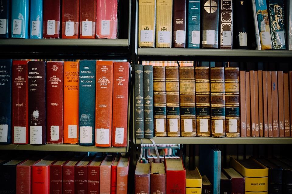 Shelves, Library, Orange, Books, Red, Blue, Read