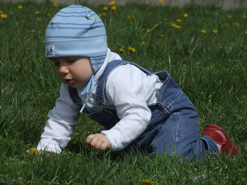 Toddler, On The Grass, Blue Cap, Crawl