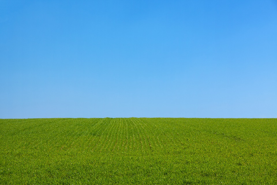 Background, Blue, Clean, Clear, Day, Field, Freedom